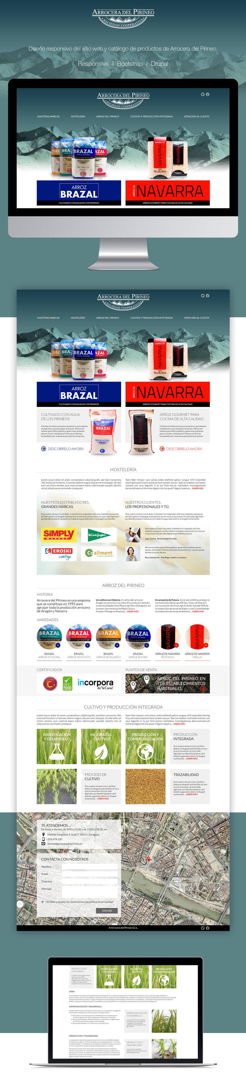 Arrocera del Pirineo | Website -1