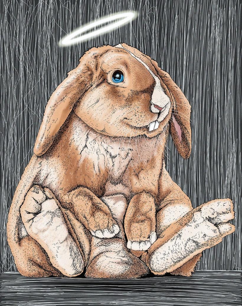 """Ilustración """"Bunny"""" 1"""