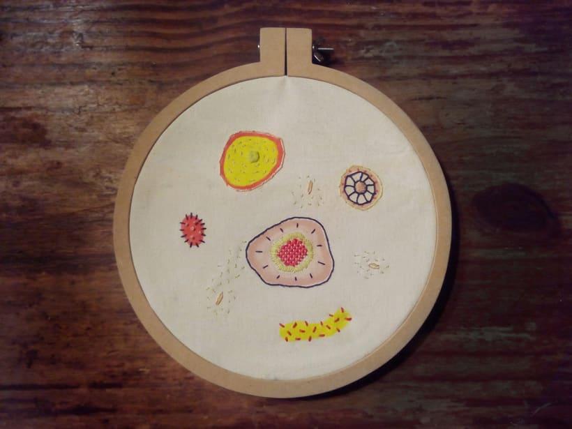 Células Parenquimáticas: bordado + pintura 0