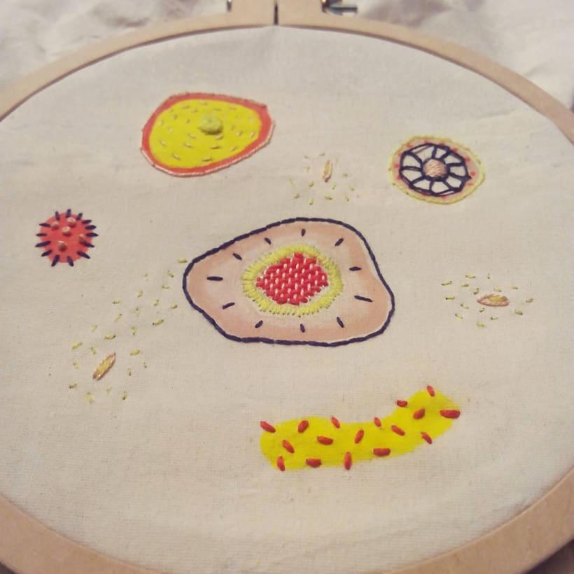 Células Parenquimáticas: bordado + pintura 2