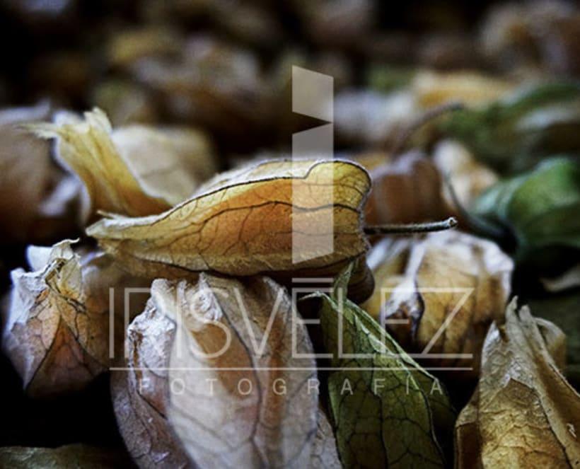 Food photography/Fotografia de Alimentos 10