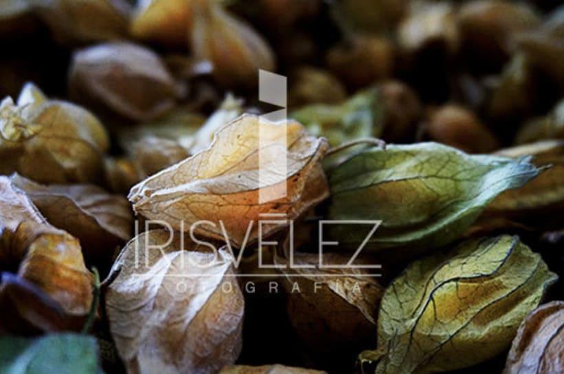 Food photography/Fotografia de Alimentos 15