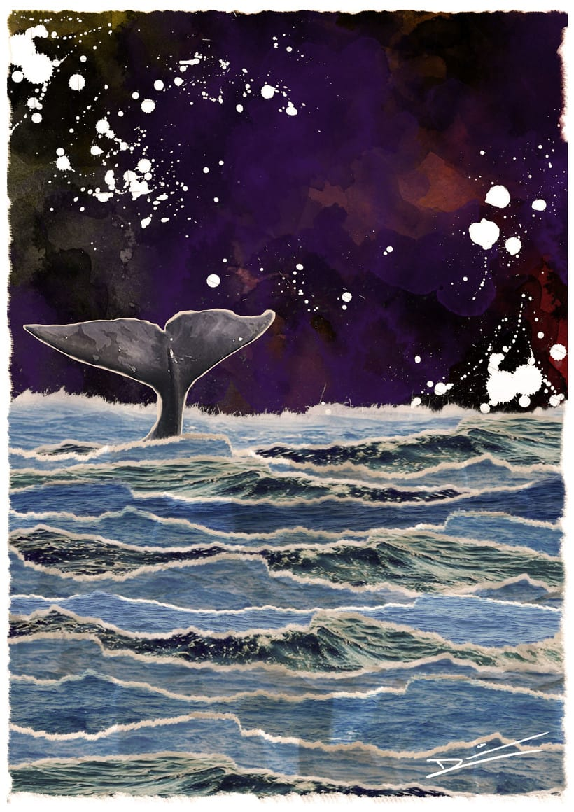 Day and night whale 0