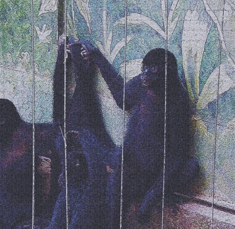 fotogrfias  de animales en tono de lienzo -1