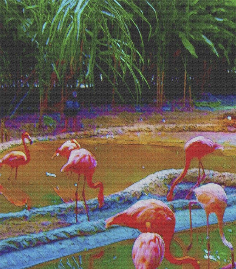 fotogrfias  de animales en tono de lienzo 1
