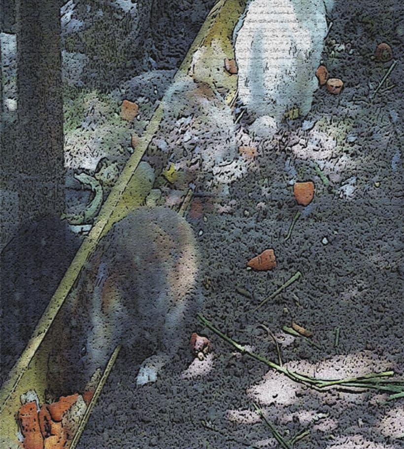 fotogrfias  de animales en tono de lienzo 5