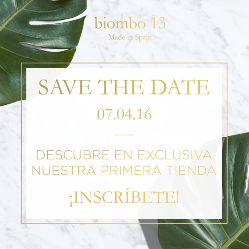 Biombo 13- Newsletter 3