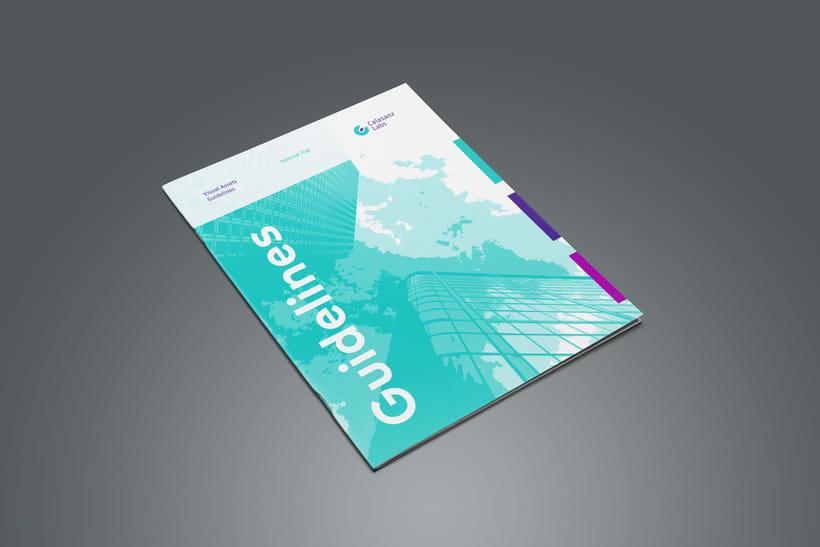 Guía de branding y recursos visuales (Calasanz Labs, 2015) 0