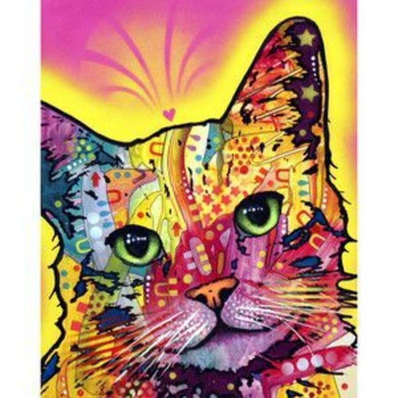 gato pop -1