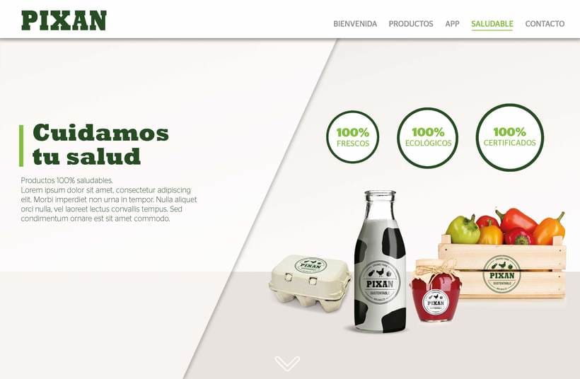 Diseño de web 5