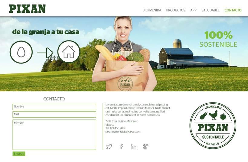 Diseño de web 6