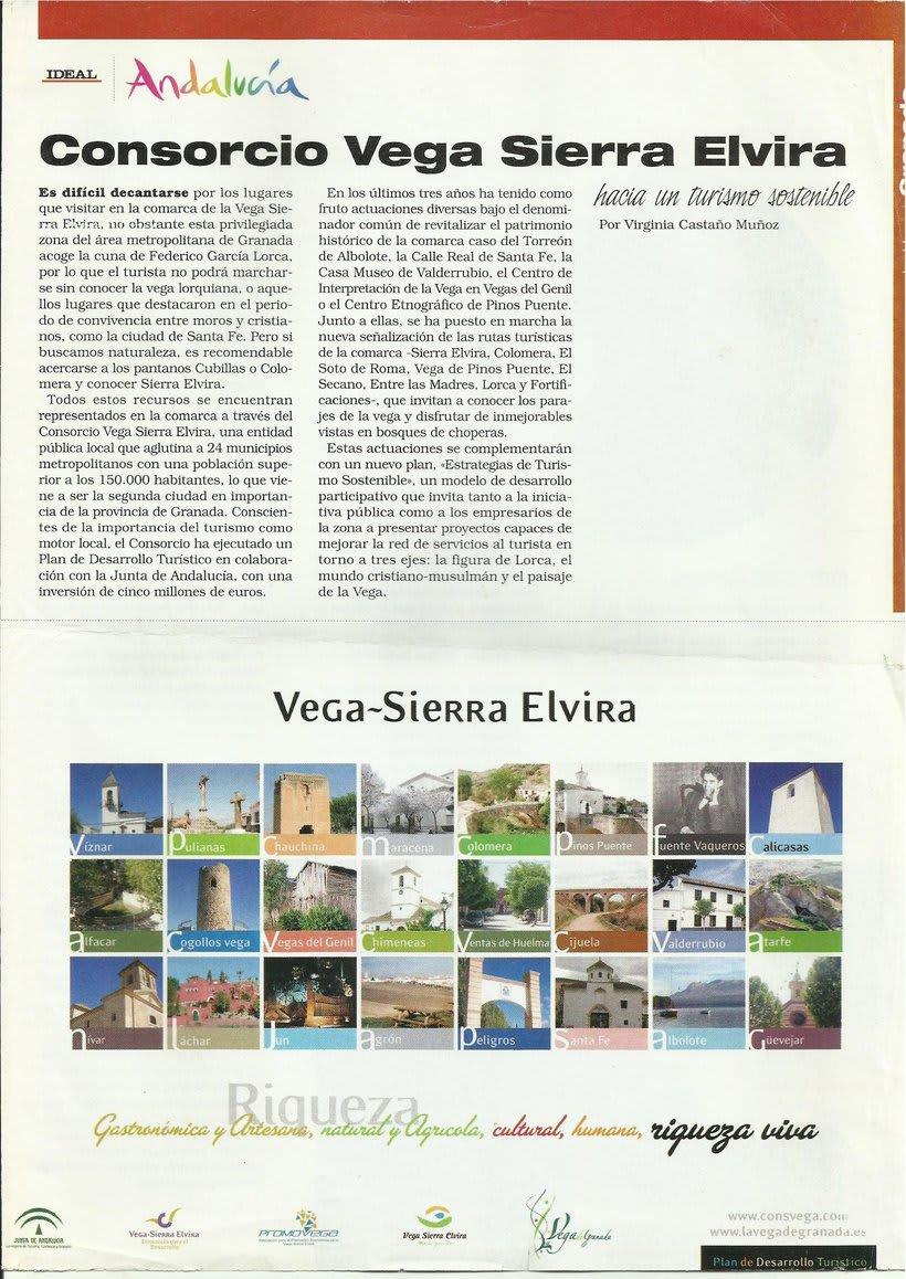 IDEAl Granada, periodista freelance -1