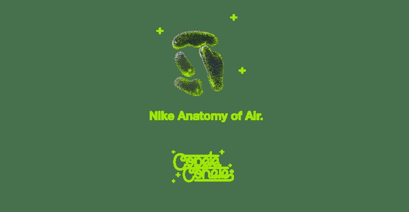 NIKE ANATOMY OF AIR 0