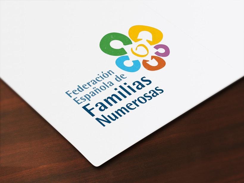 Federación Española de Familias Numerosas 0