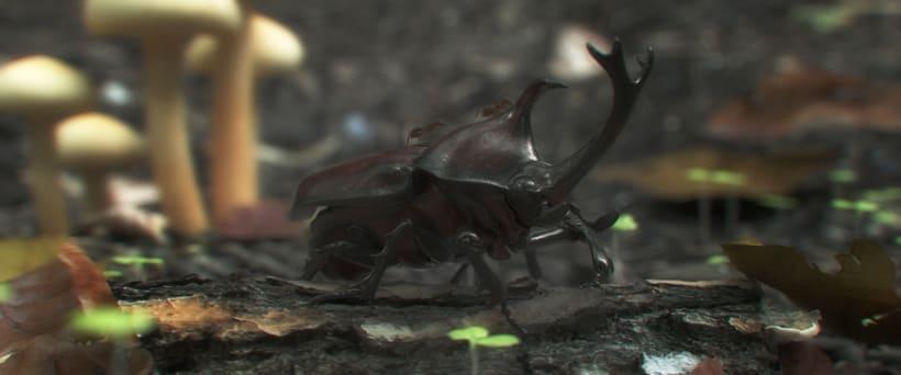 escarabajo -1