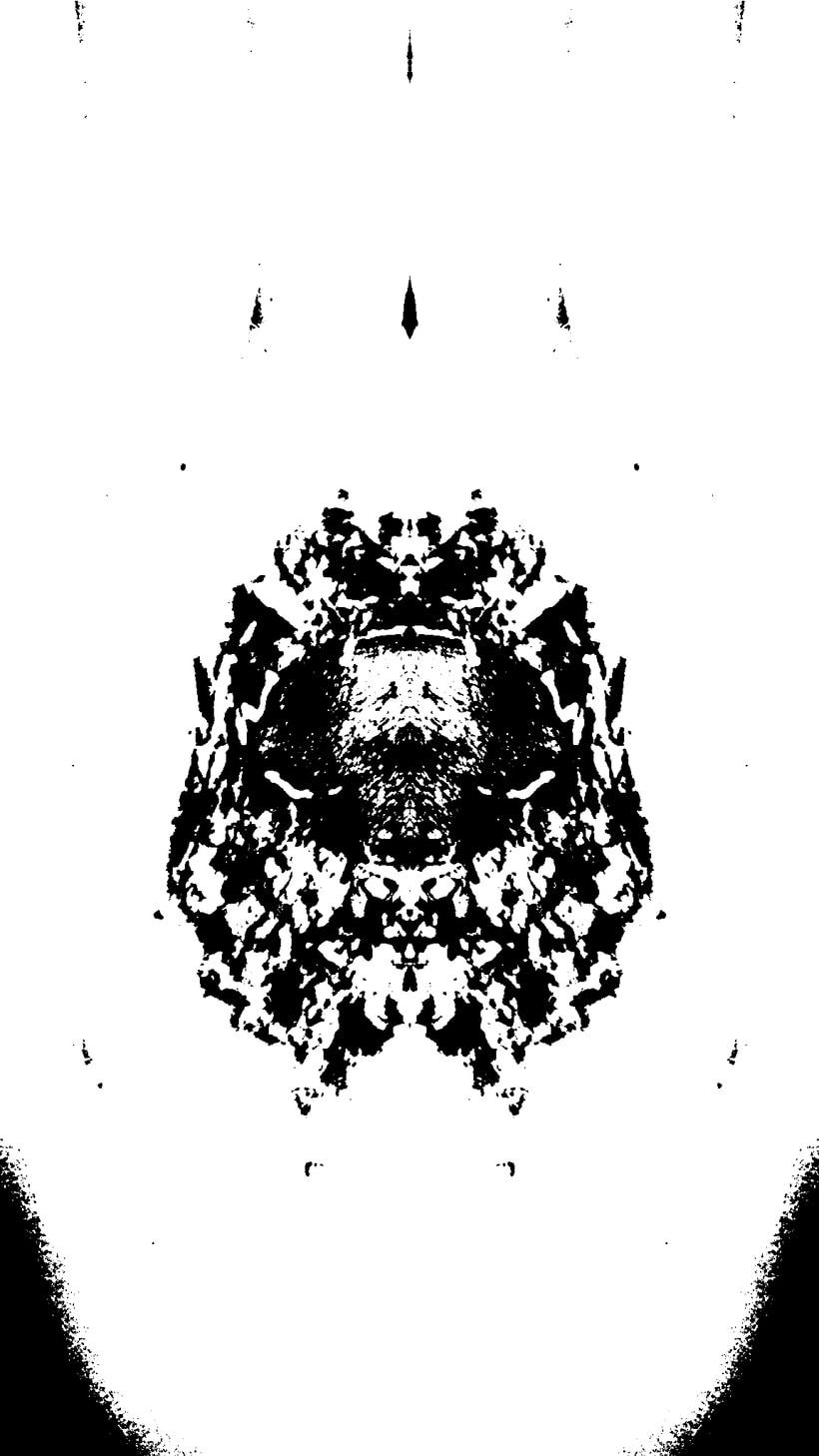 Imágenes ROSCHACH, múltiples lecturas. 11