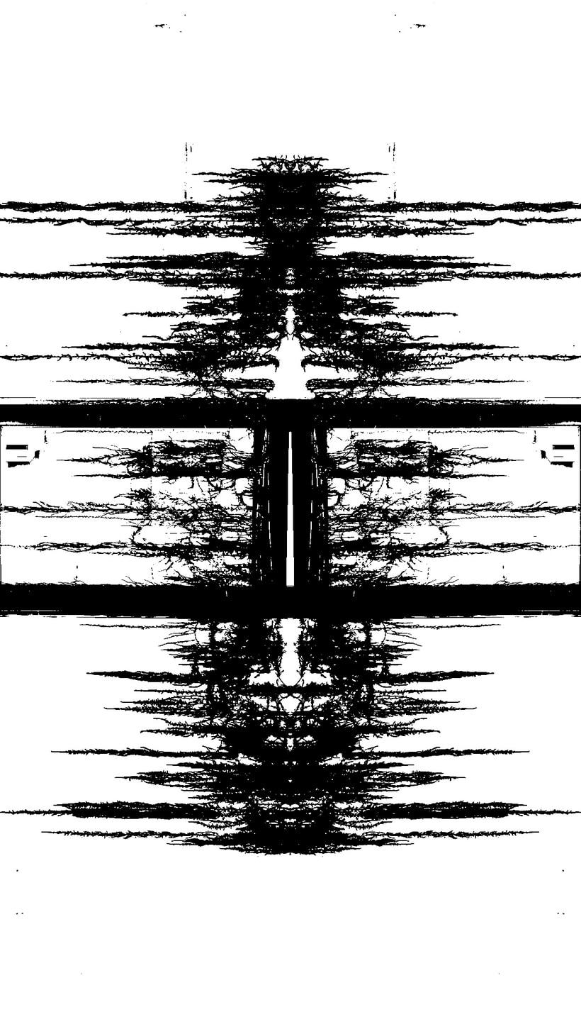 Imágenes ROSCHACH, múltiples lecturas. 16
