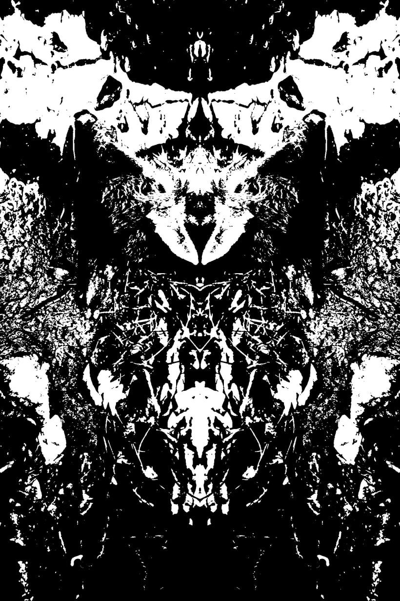 Imágenes ROSCHACH, múltiples lecturas. 17