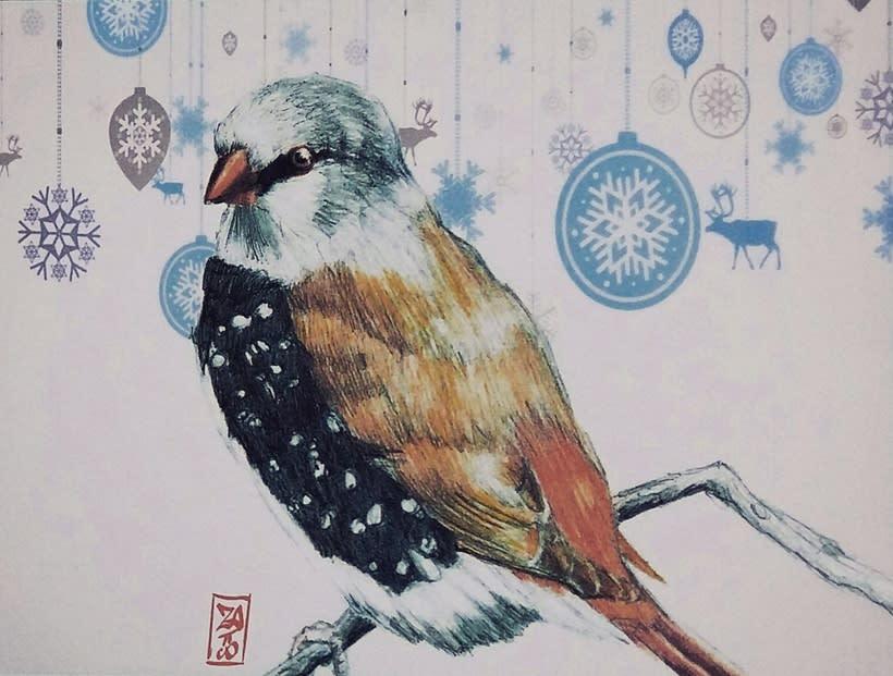birds 10
