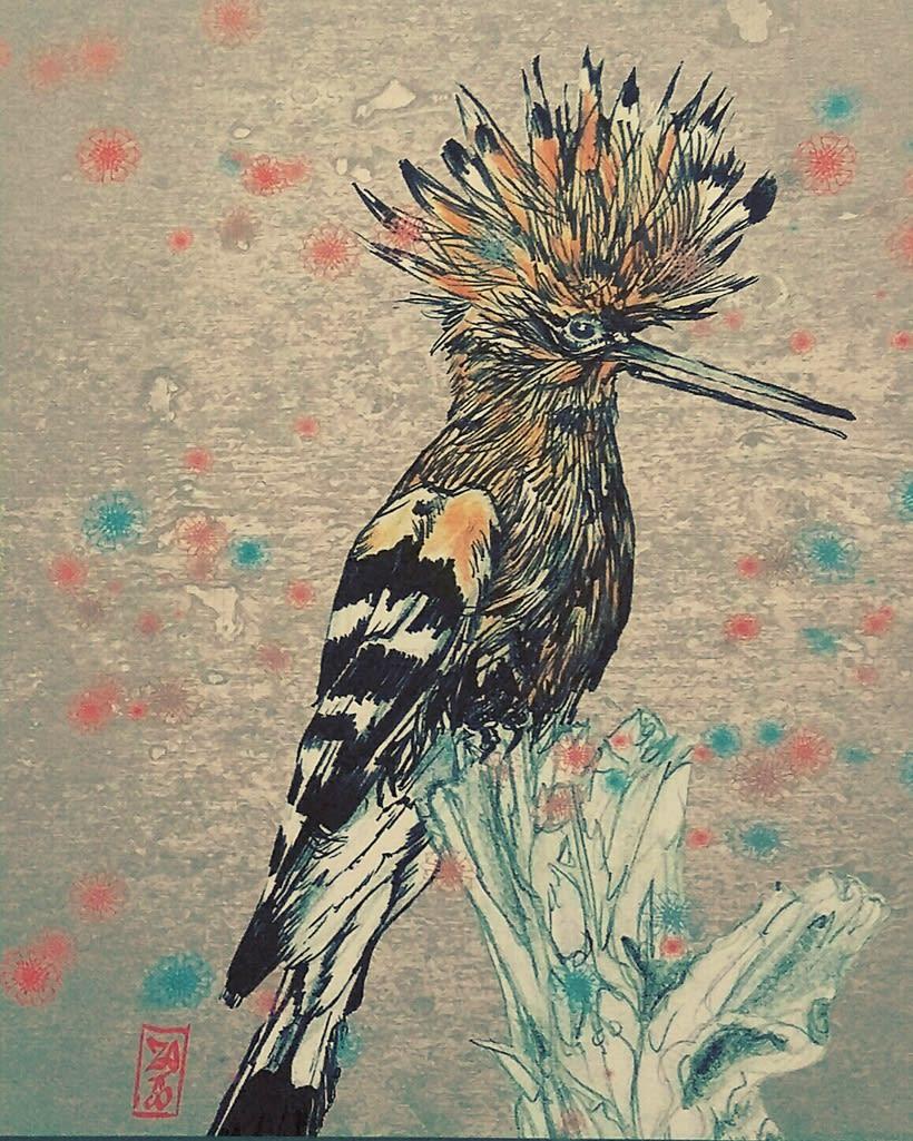 birds 18
