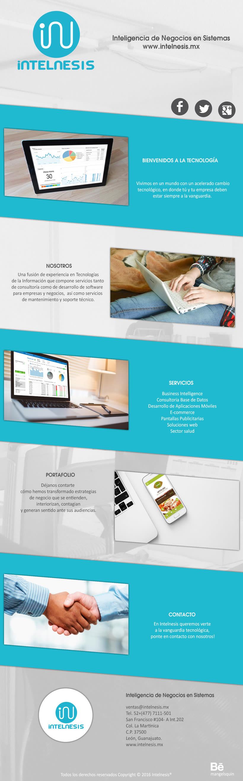 Intelnesis sitio web -1
