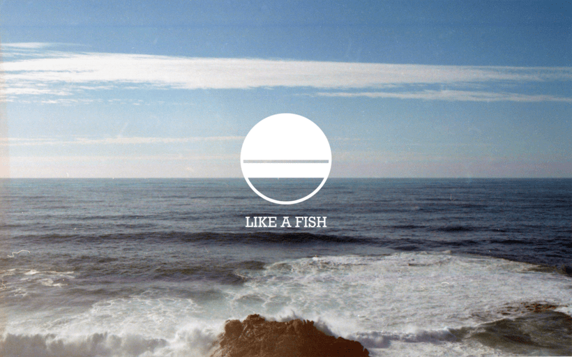 Identidad de LIKE A FISH 1