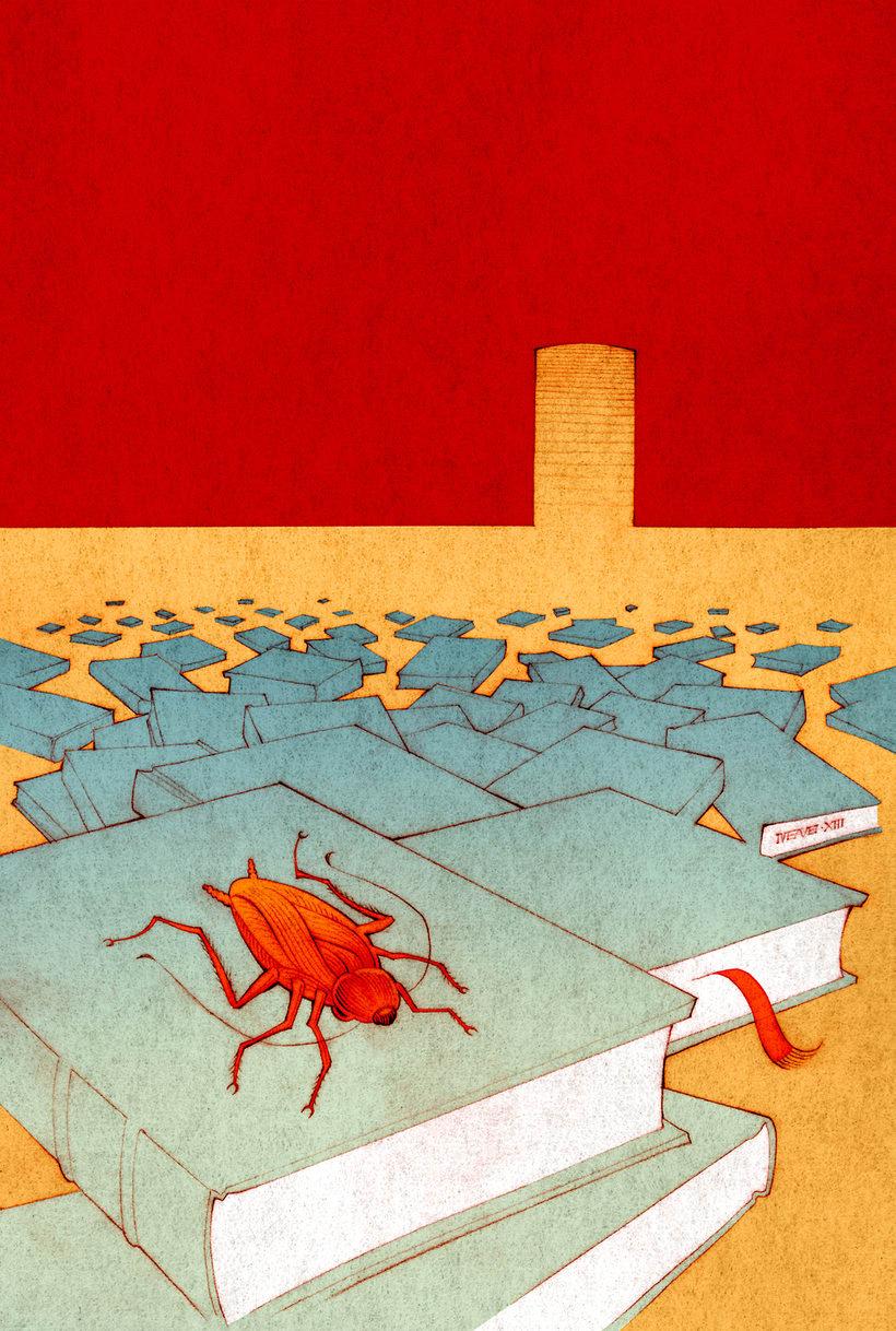 El Libro Salvaje  |  Novela ilustrada 1