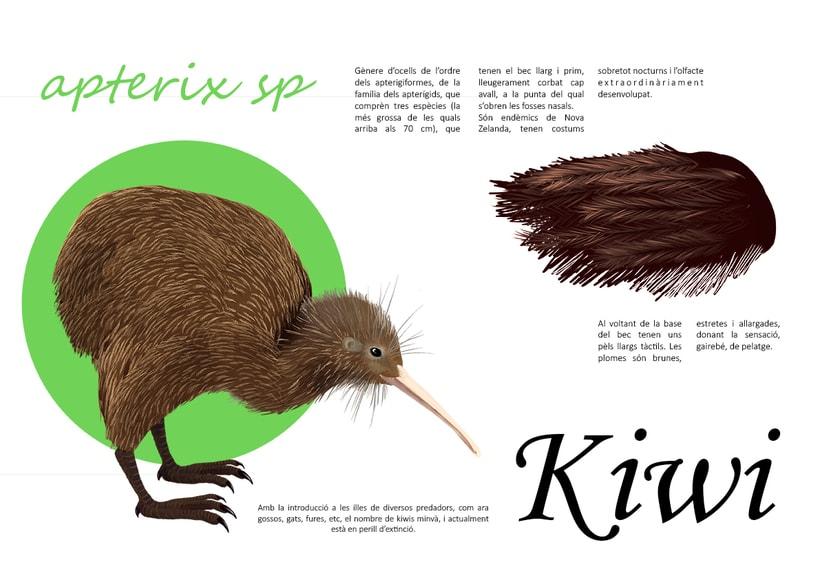 Kiwi e Iris 0