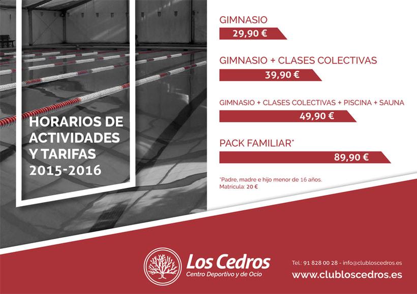 Los Cedros - Branding corporativo 8