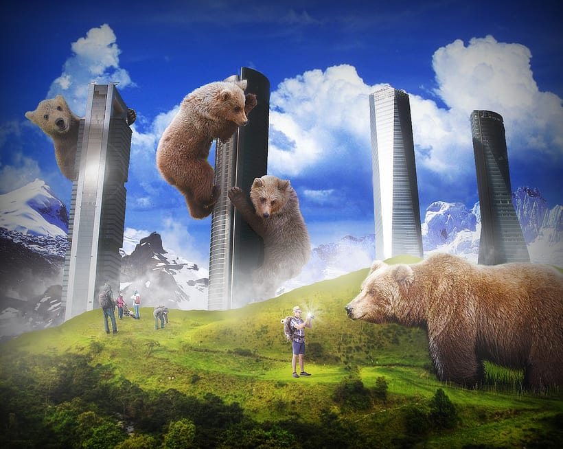 Ya hace tiempo que los osos no escalan madroños. 0