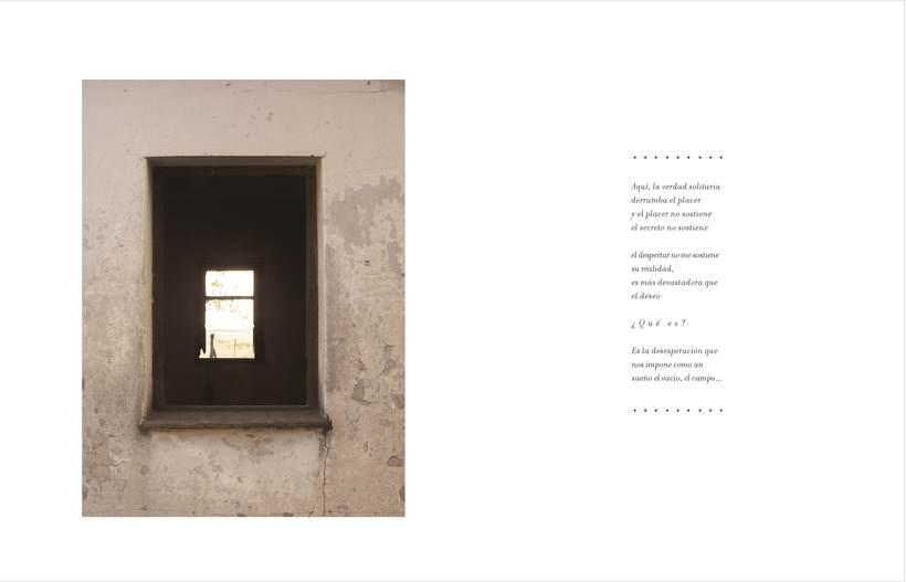 diseño editorial - libro pringles 1