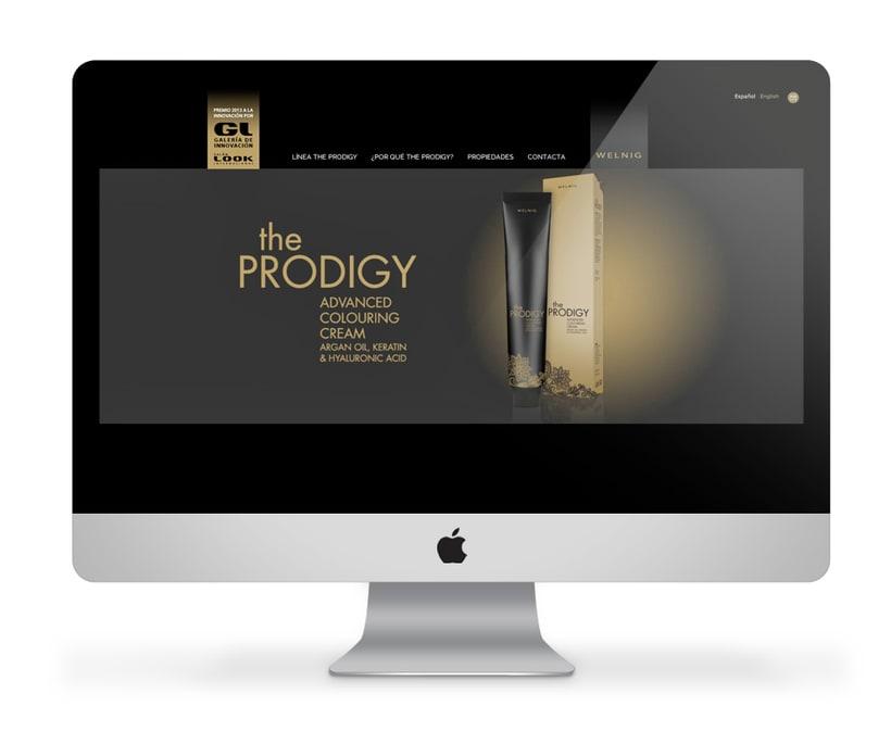 The PRODIGY Tinte y Oxigenada cosmética 1