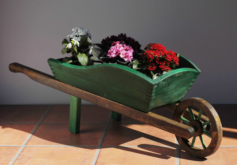 carro de jardineria 5