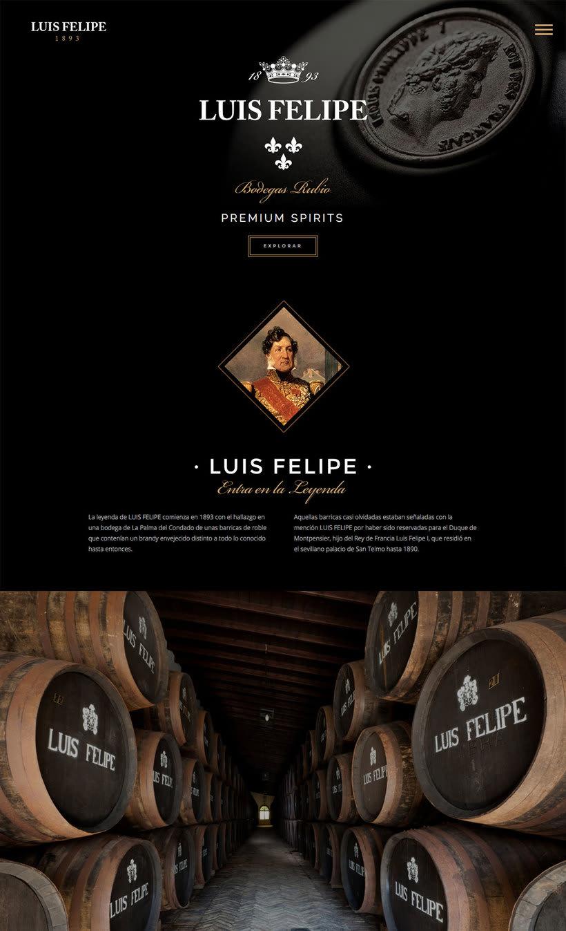 Brandy Luis Felipe. Diseño de Página Web 0