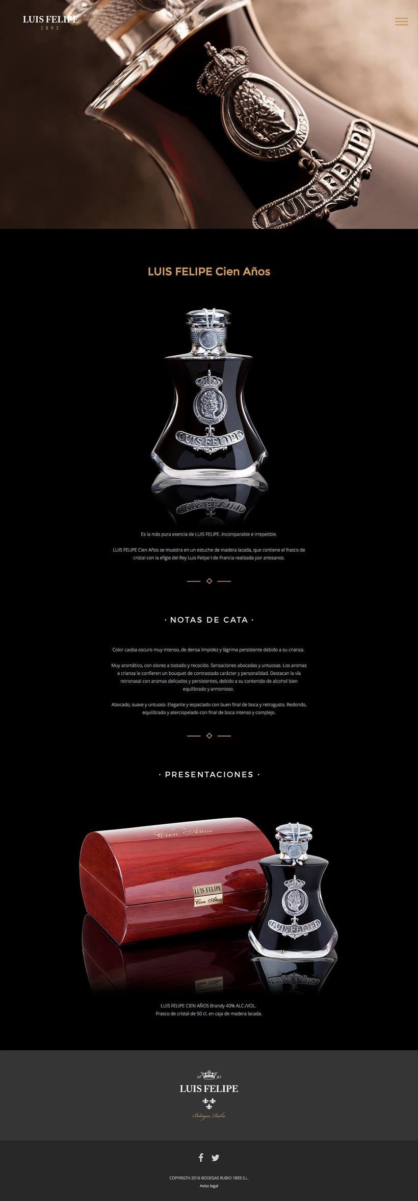 Brandy Luis Felipe. Diseño de Página Web 2