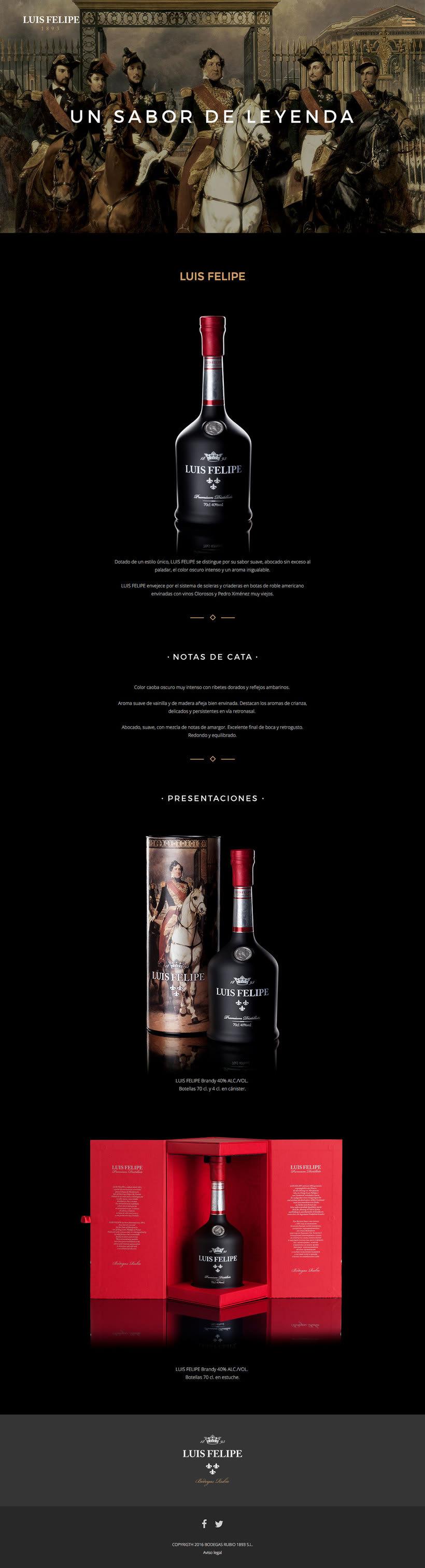 Brandy Luis Felipe. Diseño de Página Web 3
