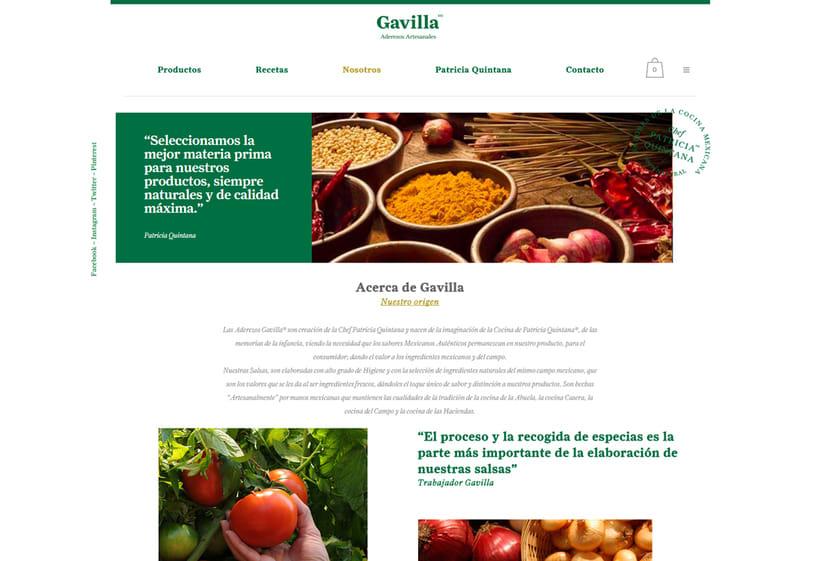 Sitio Web Gavilla 1