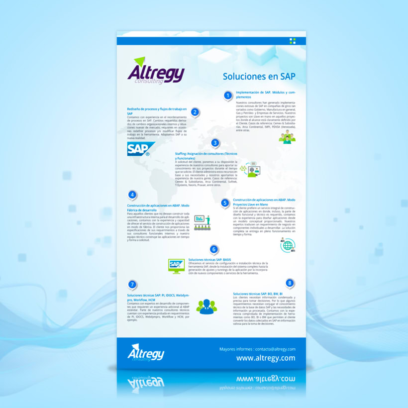 Altregy Consulting 2