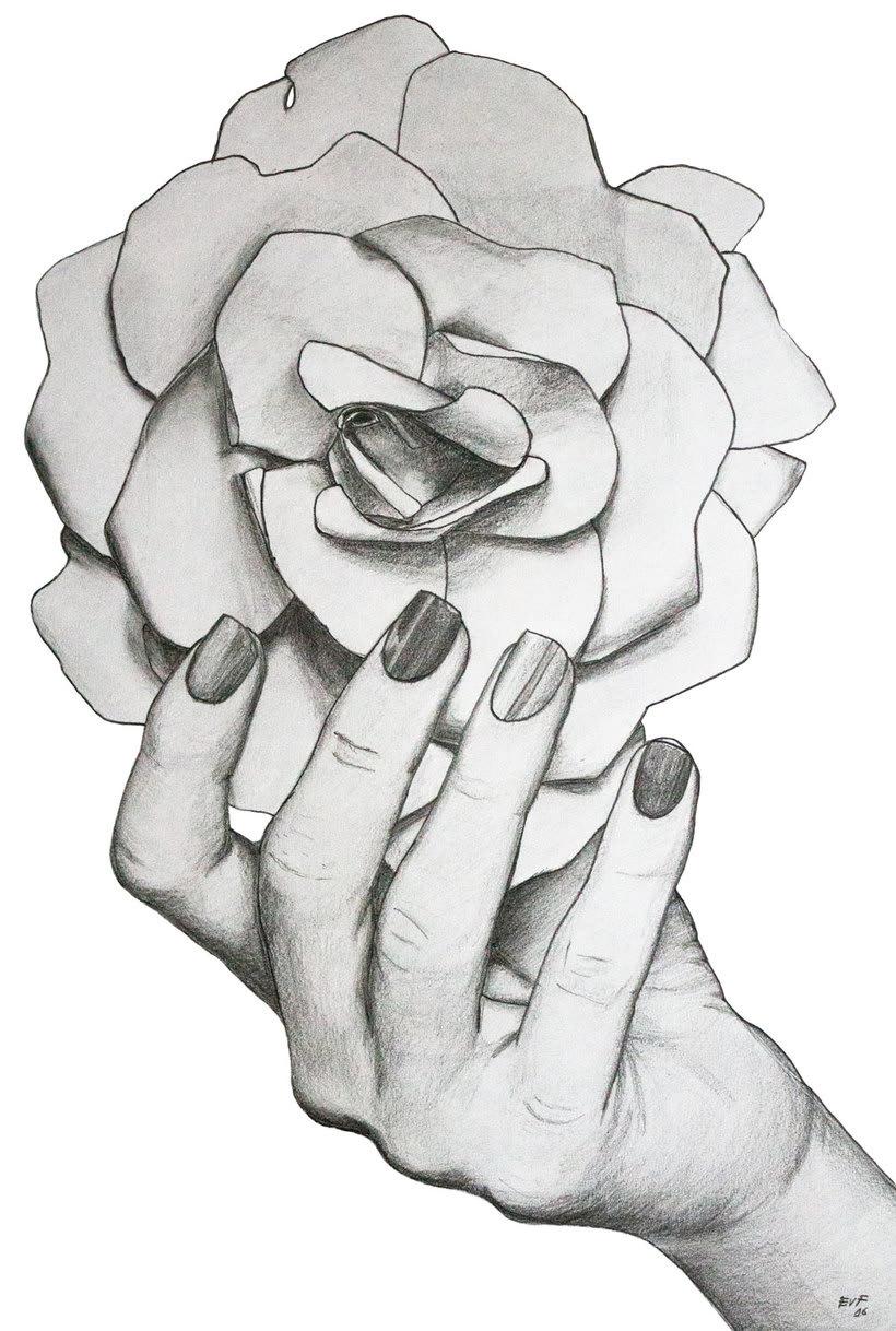 Virgen María Rosa Mística Del Dibujo A Lápiz A La Ilustración