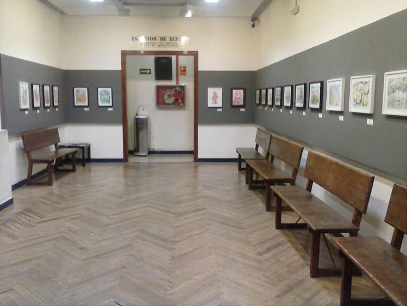 Exposición Color de Agua | Círculo de Bellas Artes Abril 2016 3