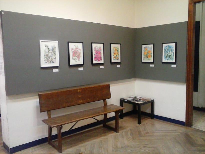 Exposición Color de Agua | Círculo de Bellas Artes Abril 2016 5