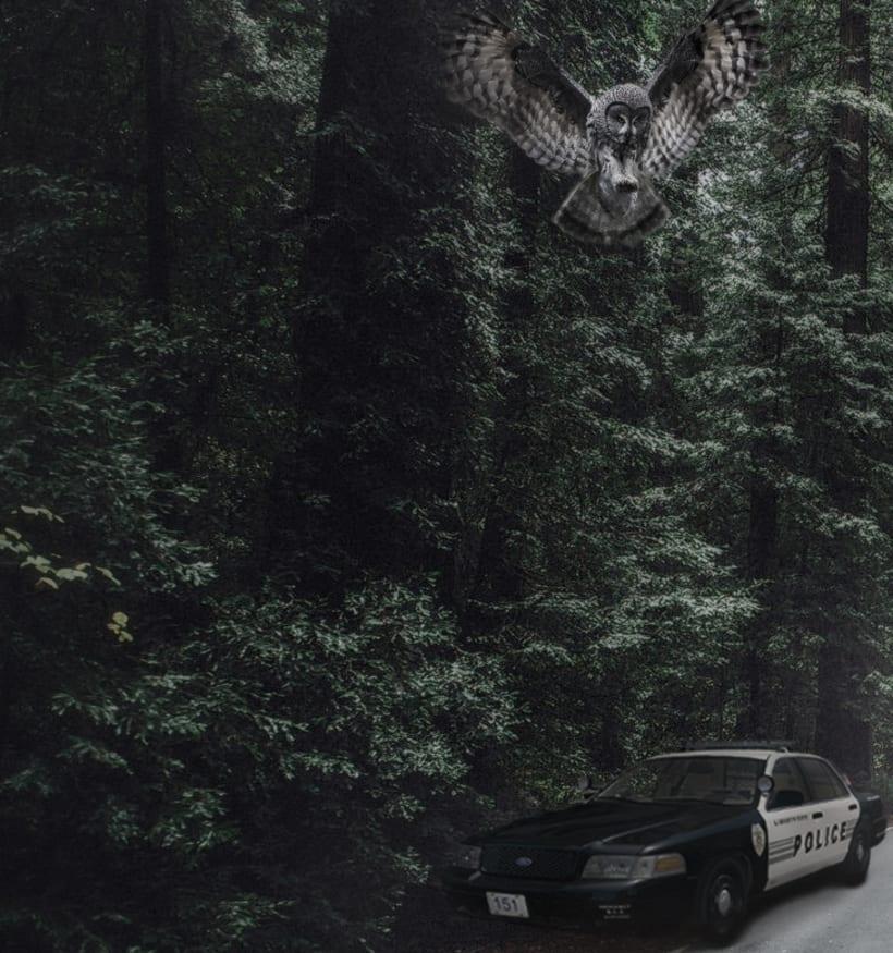 Twin Peaks 0