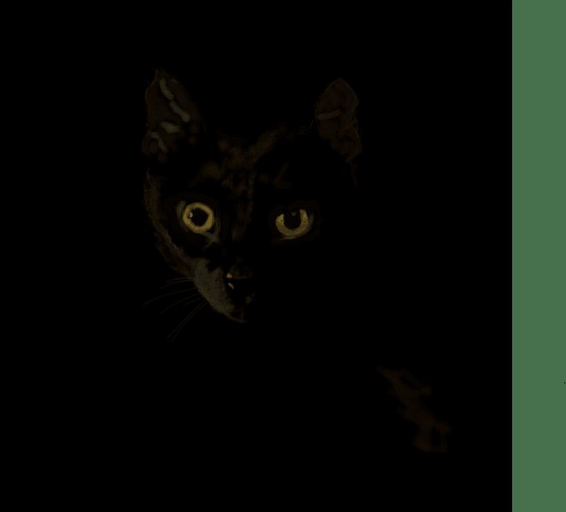 Ilustración Gato LOW KEY -1