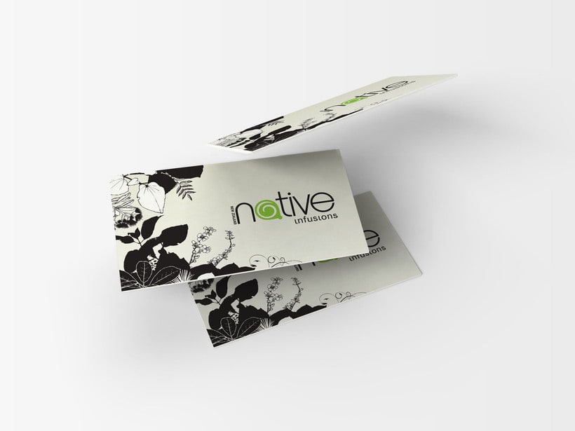 Native Infusions // Logo & Branding Design 1