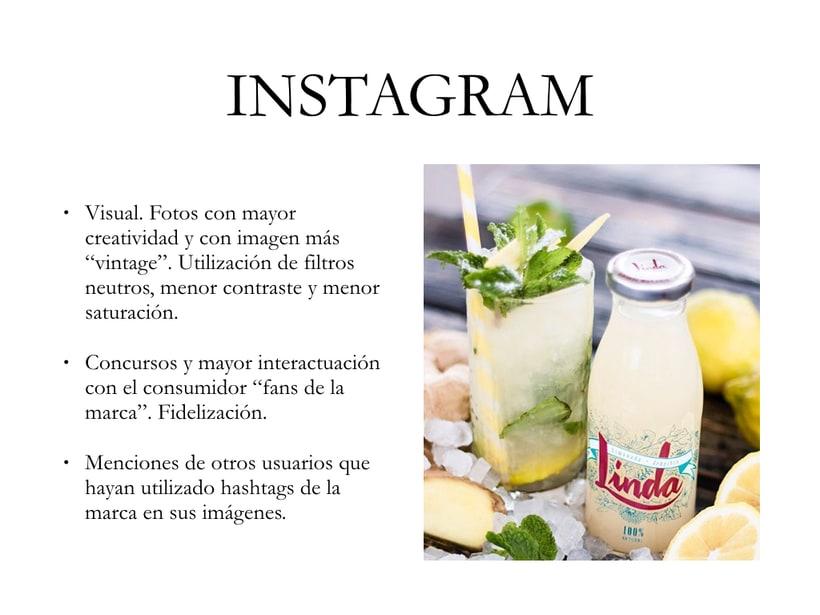 Linda Social Media Plan 5