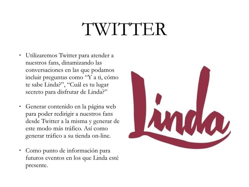 Linda Social Media Plan 6