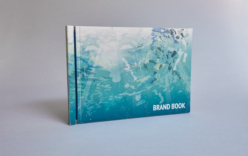 Brandbook Decathlon 0