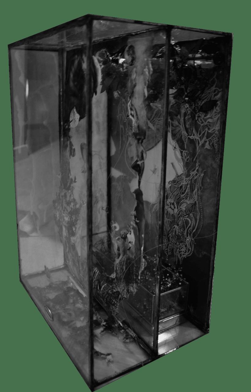 Caja de sueños 1