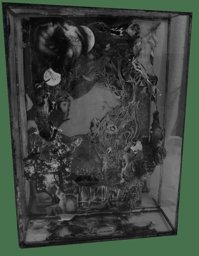 Caja de sueños 0