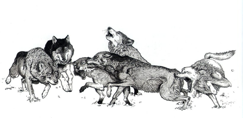 Dibujos a tinta 4